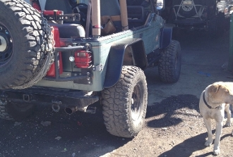 "Rear Tube Fenders with 6"" Flare (Pair)"